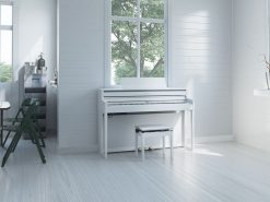 Đàn Piano Roland HP 704