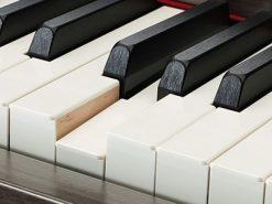 đàn piano Yamaha CLP 645